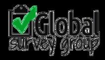 Global Survey Group (logo)