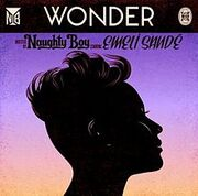 Naughty Boy - Wonder.jpeg