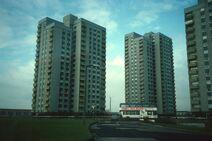 Milldane blocks 1987