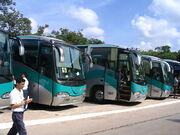 Several buses parked at Chichen Itza, Mexico