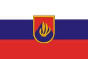 SVKFlag4