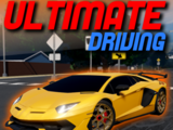 Ultimate Driving Games