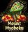 Mount Myokubo Icon