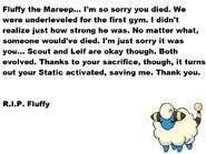 Fluffy Memorial