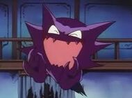 Haunter spencer