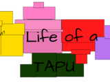Life of a Tapu