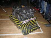 Behemoth 2005