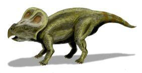 Protoceratops-Green1