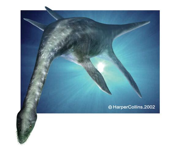 File:Plesiosaurus.jpg