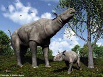 588px-Paraceratherium and child 600