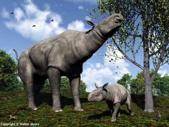 File:588px-Paraceratherium and child 600.jpg