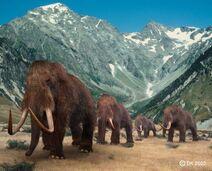 599px-Mammoth