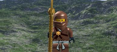 Copper Ninja