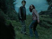 Harryhermione10