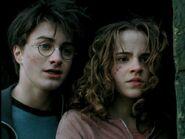 Harryhermione14