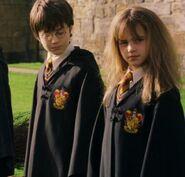 Harryhermione3