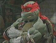 Next Mutation Raphael