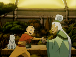 Aang and the Herbalist