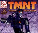 Karai (Teenage Mutant Ninja Turtles)