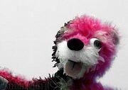 Pink Teddy Bear from 'Breaking Bad'
