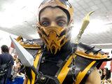 Ninja in popular culture