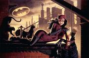 Catwoman (Jim Balent and Joe DeVito's art)