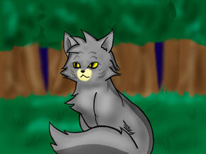 Graystripe by SilverToraGe