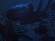 Unmamroi Dako Underwater