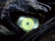 A eye of Izac
