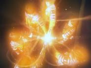 PhoenixBravetransform