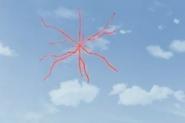 Spaida in the sky