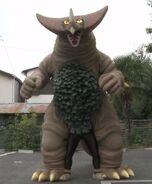Gomora giant