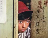 Hoshino III