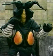 Queerwig Zetton