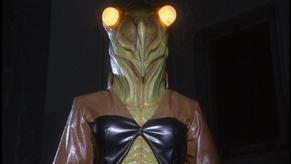 Cicada lady