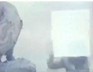 Screenshot (549)