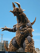 Goldras king
