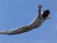 Dada Flight