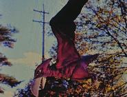 Lagon fly