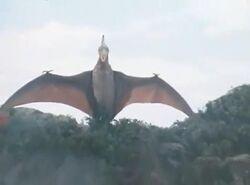 Kaiju Teranodon