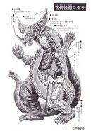 Gomora's Anatomy 2