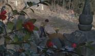 Tooru buries leo