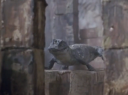 Huge Crocodile Statue