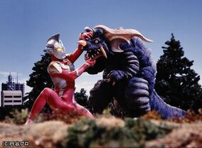 Max vs Geronga