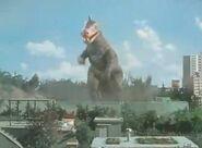 Dinosaur Taro
