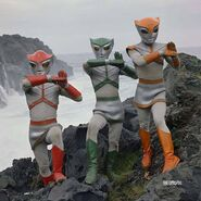 Triple fighter members