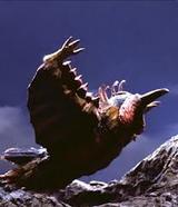 Birdon fly