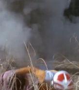 Galtans plant a bomb