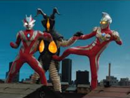 Zetton v Max and Xenon