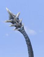 Cherubim Tail
